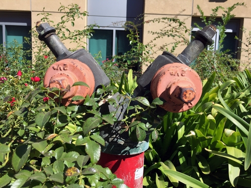 Photograph: Camouflaged Fire Hydrant