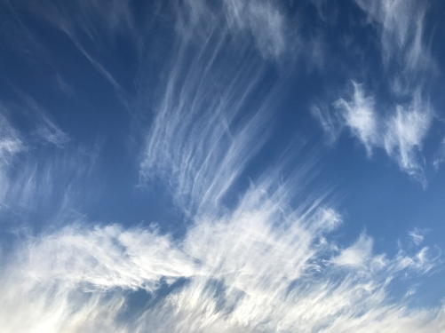 Photograph: Blue Sky Feather Strokes