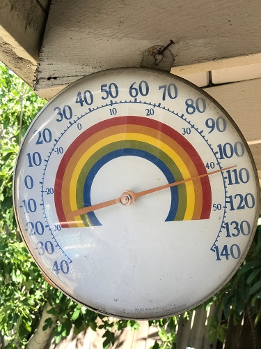 Photograph: Hot Day in CA