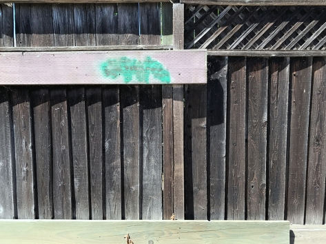 Photograph: Wooden Fence with Slats, Angles and Green Spot