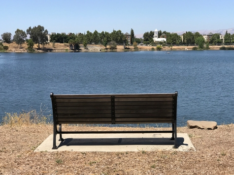 Photograph: Park Bench Overlooking Lake No. 1 of Series