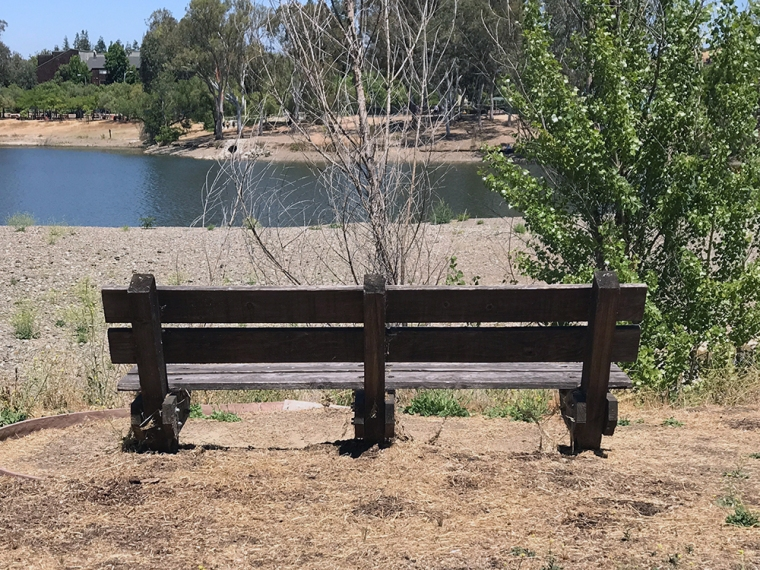 Photograph: Park Bench Overlooking Lake No. 2 of Series