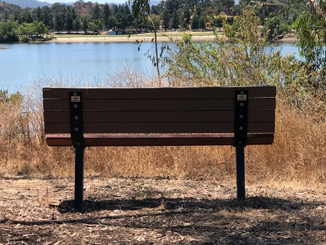 Photograph: Park Bench Overlooking Lake No. 3 of Series