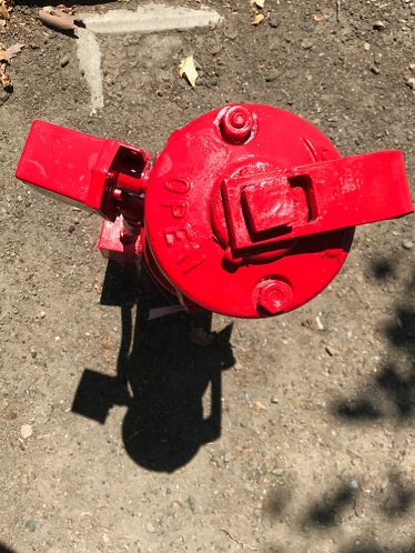 Photograph: Fire Hydrant from the Top 073017