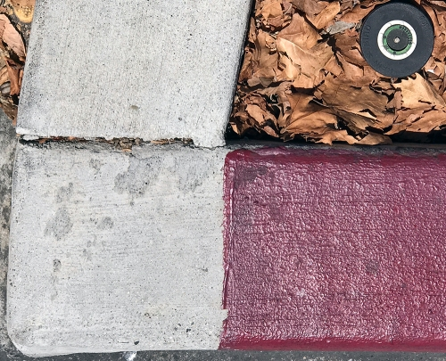 Photograph: Found Art - Curb, Leaves and Sprinkler Head 081417