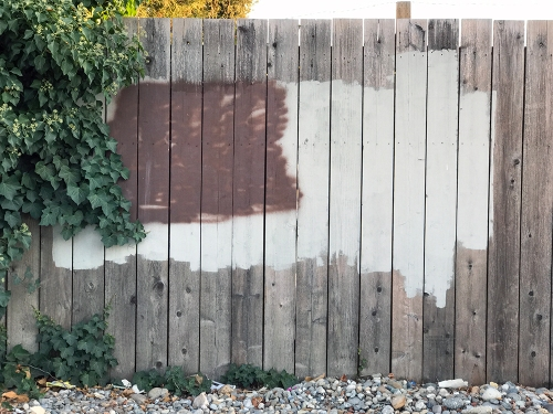 Photograph: Street Photography - Painted Fence 083017