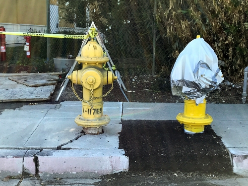 Photography: Replacement Fire Hydrant 092517