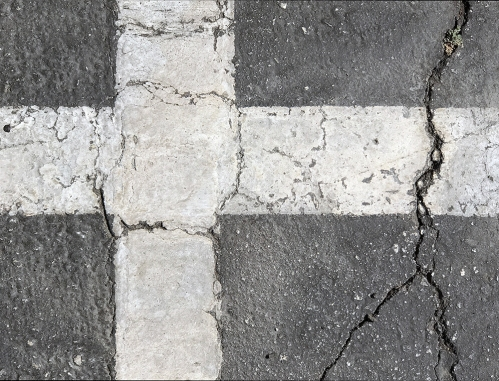 Photography: Parking Lot Crack 100217