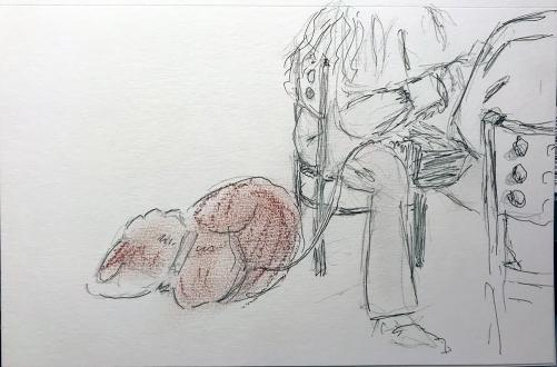 Sketch: Pencil, Pen and Ink, Conte Crayon - Sleeping Dog