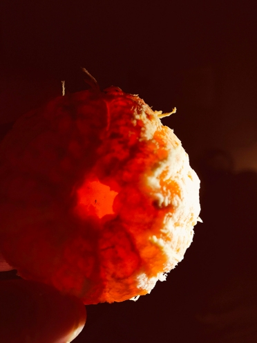 Photograph: Tangerine