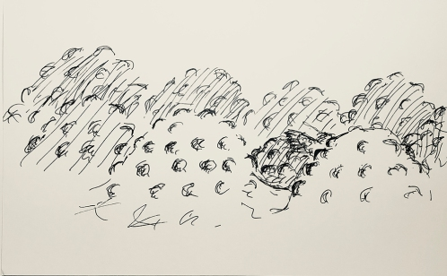 Sketch: Pen and Ink - Dream Image --> Bumpy Hills