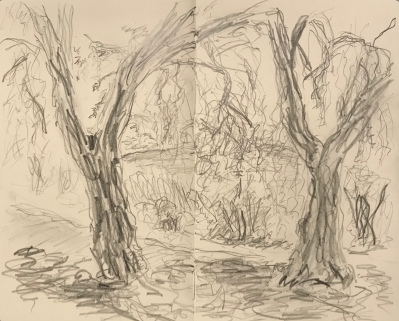 Sketch: Pencil - Landscape Before Wash