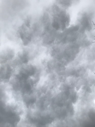 Photography: Sky Photography - Study in Grey Clouds