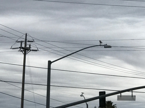Photography: Sky Photography - Grays Divided by Wires