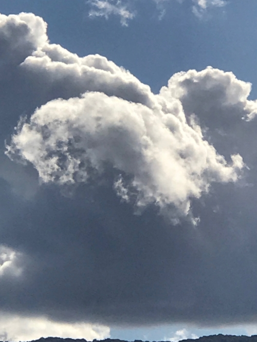 Photography: Sky Photography - White Cloud on Grey Cloud