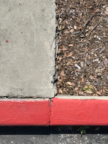 Photography: Street Photography - Concrete/Earth Dividing Line