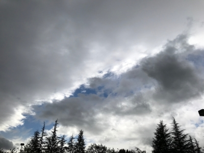 Photography: Sky Photography - Gray Clouds in Front of Cloud Line, with Evergreens: Ref Photo