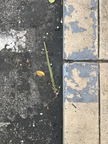 Photography: Street Photography - Abandonment
