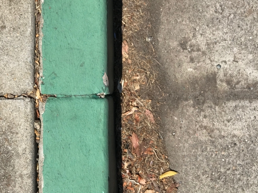 Photography: Street Photography - Green Curb