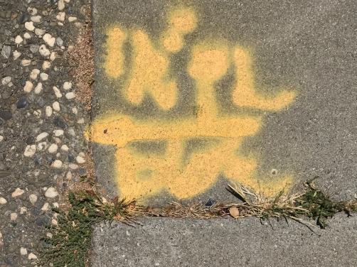 Photography: Street Photography - Modern Yellow Petroglyph