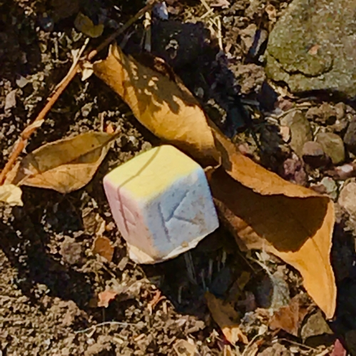 Photography: Street Photography - Washed Out Primary Colored Cube Among the Leaves