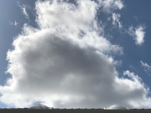 Photography: Back Yard Photography - Cloud That Looks Like a Whale