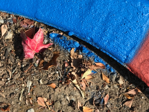 Photography: Street Photography - Red Leaf Next to Blue and Red Painted Curb 101519