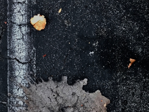 Photography: Street Photography - Explosion Yielding Leaves
