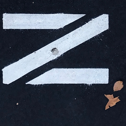 Photography: Street Photography - Leaf Punctuation