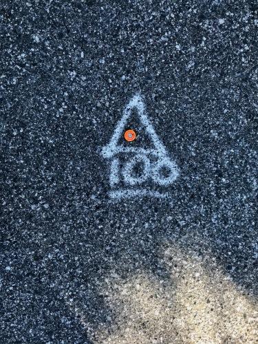 Photography: Street Photography - Survey Marker 100