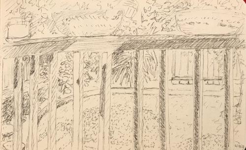 Sketch: Vintage Backyard Pen and Ink 6.13.2010