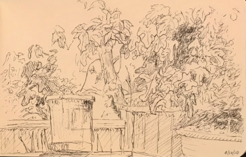 Sketch: Vintage Drawing: Potted Plant Outdoors 6.10.2010