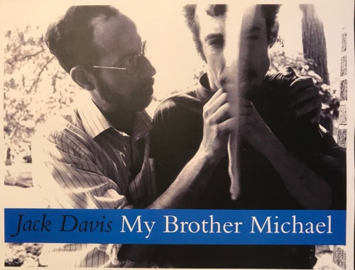 Book Cover to My Brother Michael