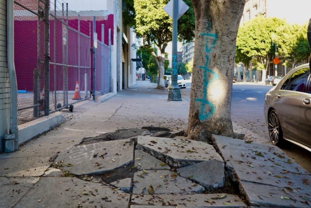 Street Photography: Skateboarders' Nemesis