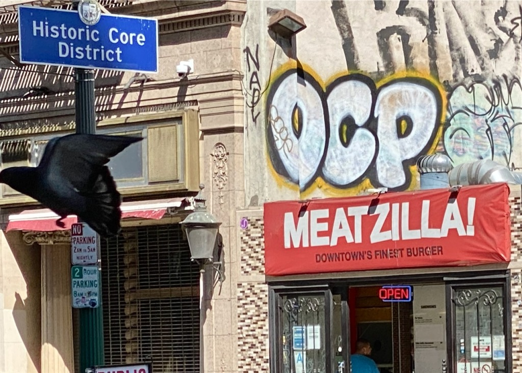 Street Photography: Pigeon Escaping from Meatzilla