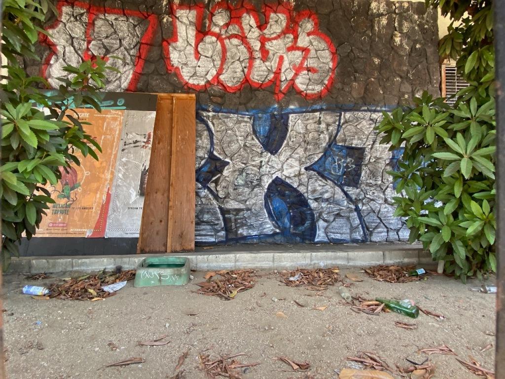 Street Photography: Jungle Graffiti