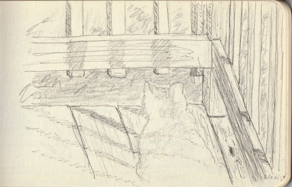 Vintage Sketch Book Series: Ink on Pencil - Cat on Back Porch (March 2010)