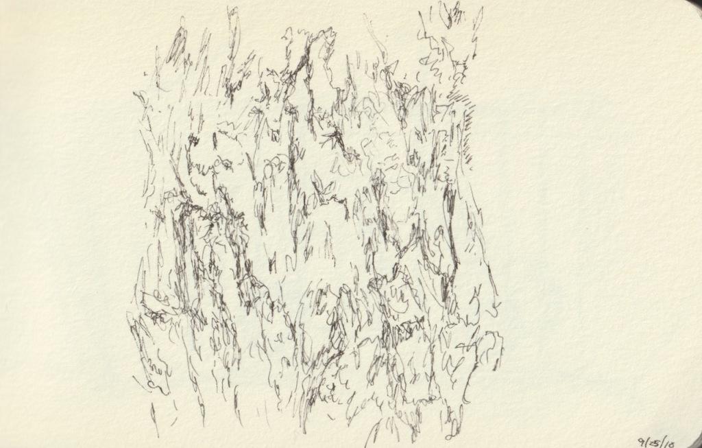 Vintage Sketch Book Series: Tree Trunk (September 2010)