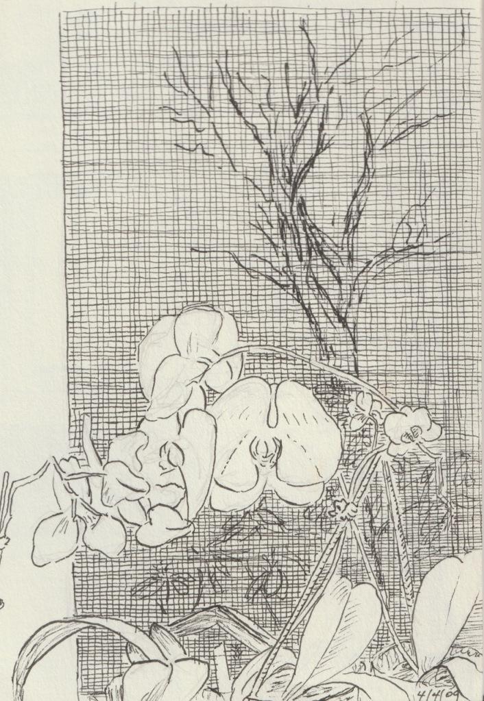 Vintage Sketch Book Series: Mom's Orchids (April 2009)