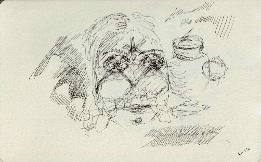 Vintage Sketch Book Series: Pen and Ink Doodles (June 2011)