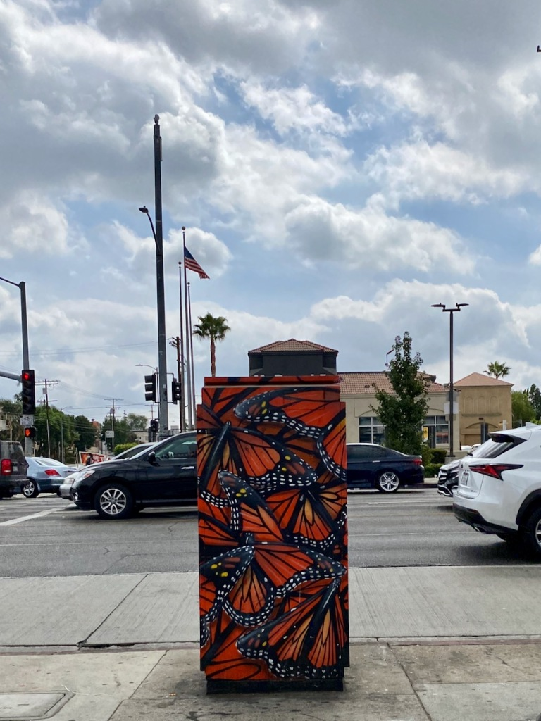 Street Photography: Butterflied Electric Box