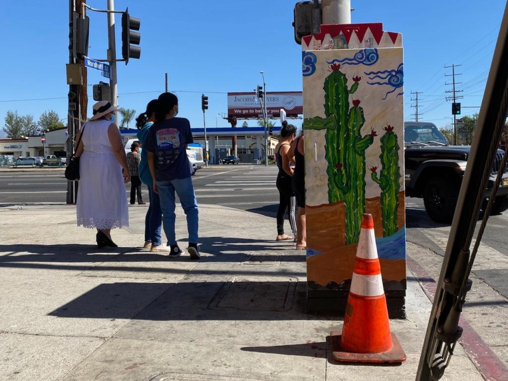 Street Photography: Cactus Electric Box